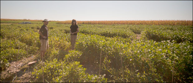 Bilyeu and Student assistant in soybean field