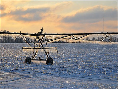 Iced irrigator