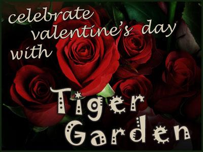 Tiger Garden Rose