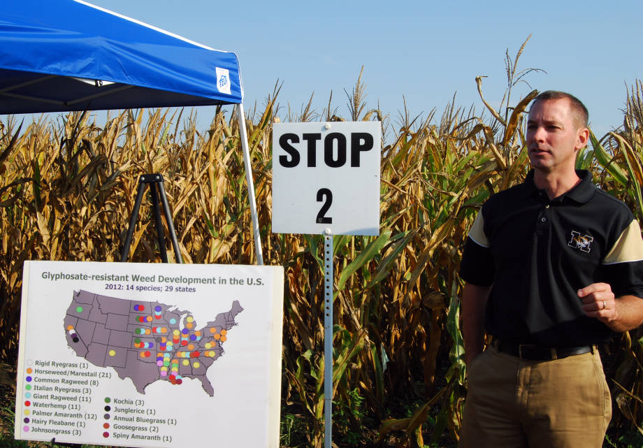 Glyphosate-resistant weeds are a growing problem for Missouri farmers. Kevin Bradley, associate professor in the Division of Plant Sciences, discusses the extent of the problem and strategies to control resistant weeds at Hundley Whaley Research Center's Field Day, Wednesday, Aug. 29.