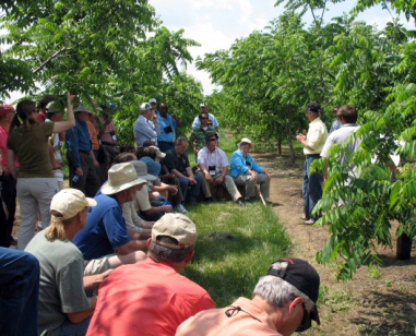 Mark Coggeshall, research assistant professor of forestry at MU, discusses black walnut hybrid collection at HARC during North American Agroforestry Conference Field Tour.