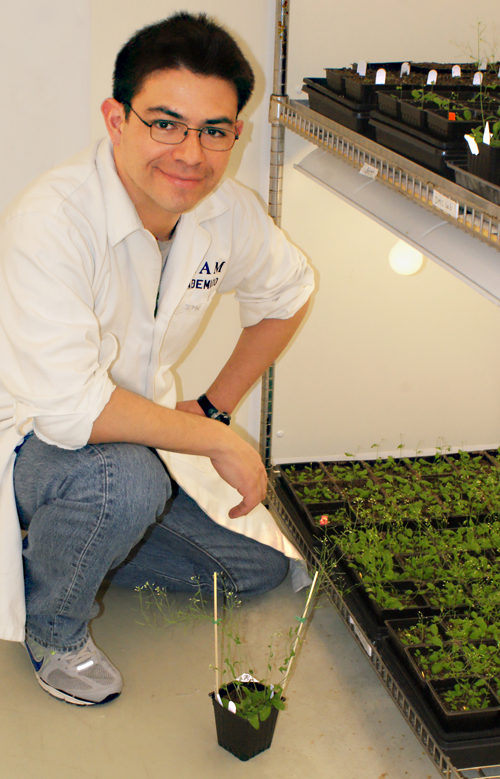 David Mendoza-Cozatl, assistant professor of plant sciences at the College of Agriculture, Food and Natural Resources.