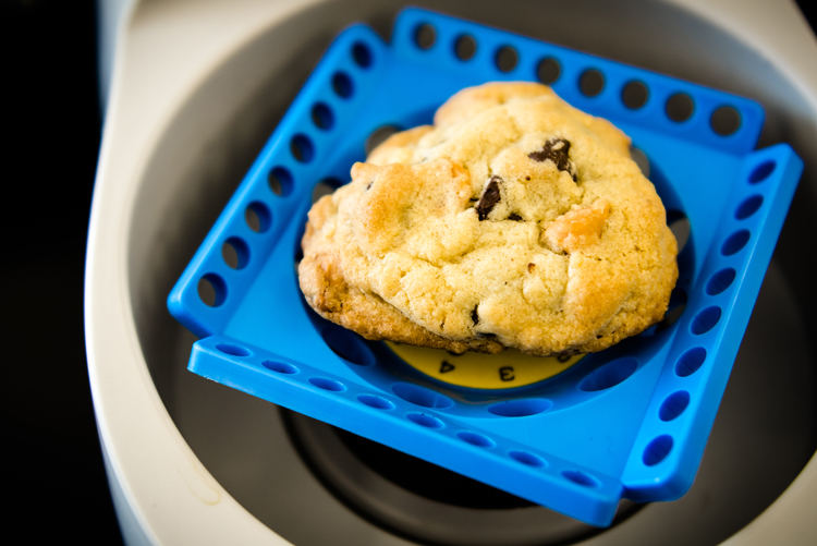 Homemade cookie in a centrifuge.