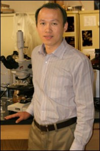 Mengshi Lin, assistant professor of Food Science.