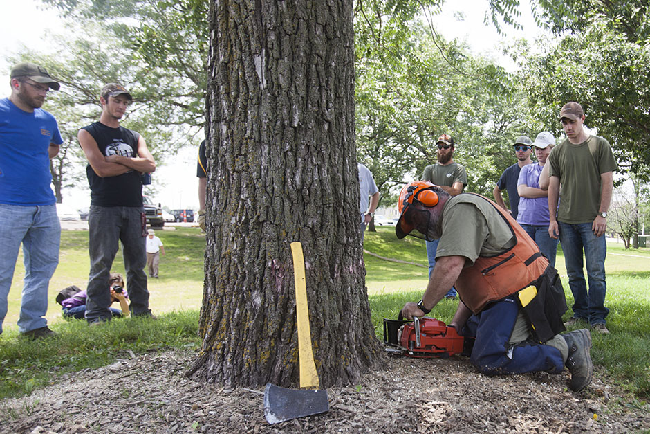Professional logger Joe Glenn demonstrates how to properly fell a tree to the forestry students in the five-week field studies camp. Residential Life partnered with the College of Agriculture, Food and Natural Resources and Landscape Services to remove trees within the footprint of the future Virginia Avenue South Housing complex. Photo by Rob Hill.