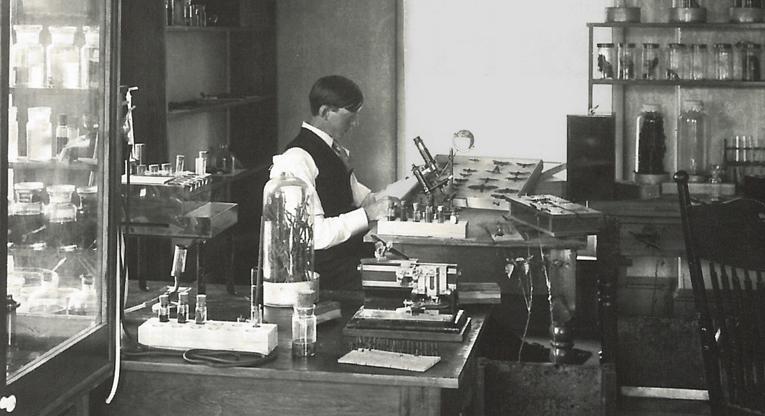A MU entomology lab of the 1930s. Courtesy University Archives.