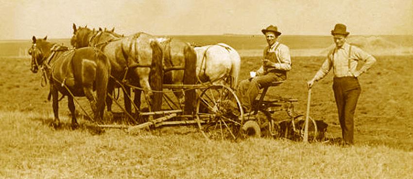 Plowing (2)