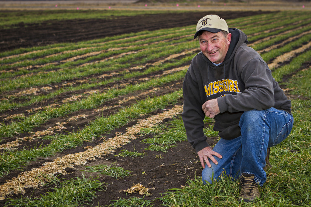 cover crop precision ag study_hundley whaley_2013_0013