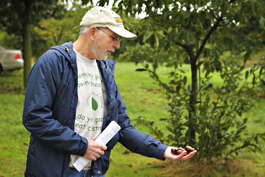 Michael A. Gold, research professor of forestry, talks to a group at the HARC Field Day last October about the research of Chinese chestnut and how the trees can be a beneficial crop in Missouri.