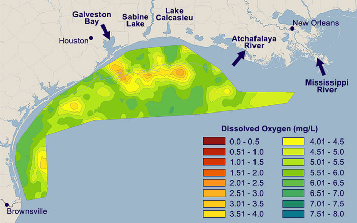 Hypoxic zones of the Gulf of Mexico