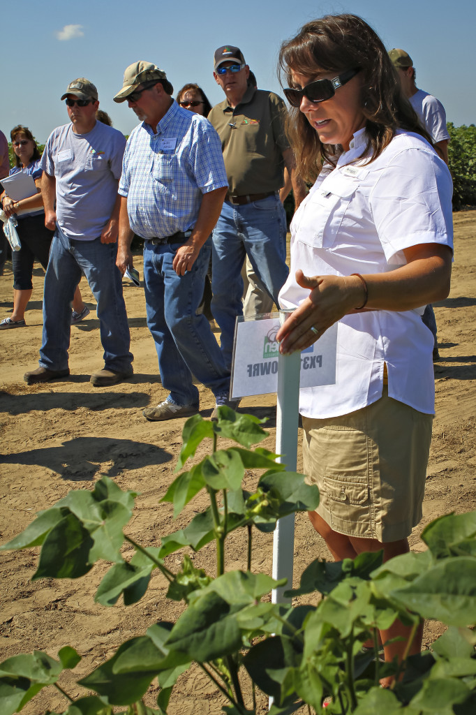 Cotton Specialist Andrea Jones will once again highlight the latest cotton variety testing results.