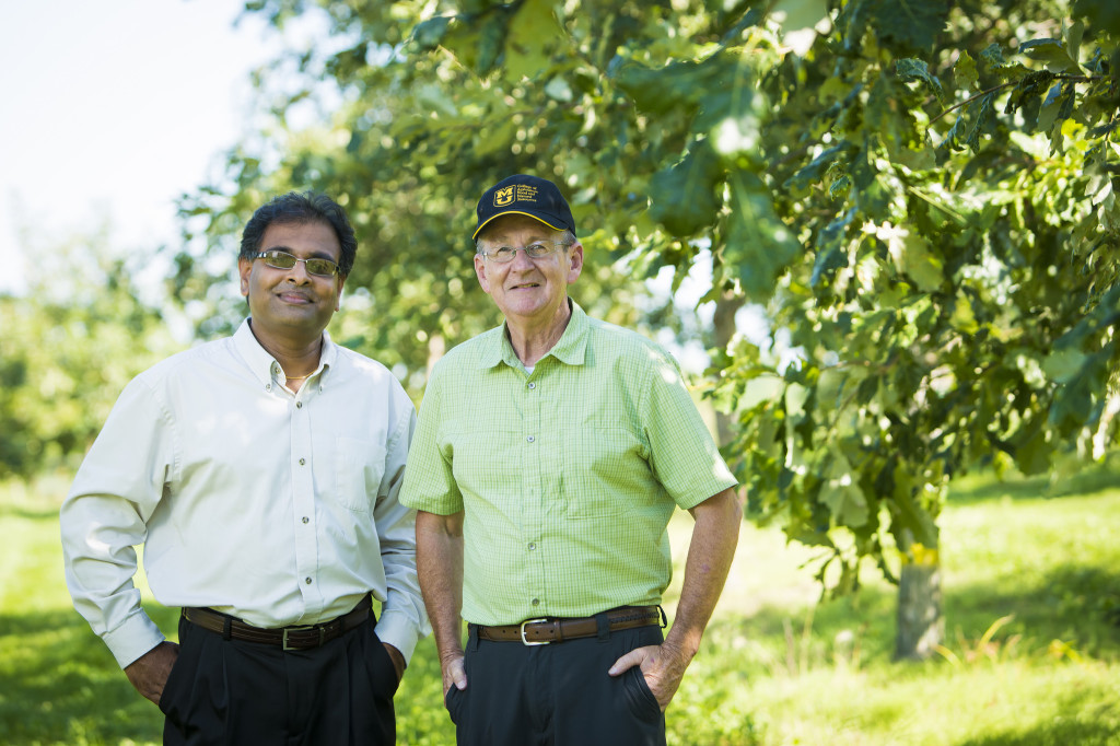 Shibu Jose and Mark Coggleshall of the MU Center for Agroforestry. Photo by Kyle Spradley.