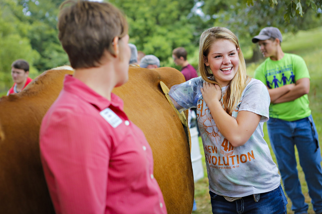 Charli Campbell, sophomore at Neosho High School, reaches into the cow.