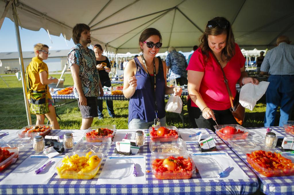 2014 tomato festival