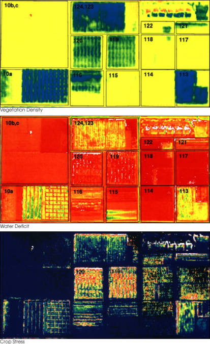 These three false-color images demonstrate some of the applications of remote sensing in precision farming. The goal of precision farming is to improve farmers' profits and harvest yields while reducing the negative impacts of farming on the environment that come from over-application of chemicals. The images were acquired by the Daedalus sensor aboard a NASA aircraft flying over the Maricopa Agricultural Center in Arizona.  The top image (vegetation density) shows the color variations determined by crop density, where dark blues and greens indicate lush vegetation and reds show areas of bare soil. The middle image is a map of water deficit, derived from the Daedalus' reflectance and temperature measurements. Greens and blues indicate wet soil and reds are dry soil. The bottom image shows where crops are under serious stress, as is particularly the case in Fields 120 and 119 (indicated by red and yellow pixels). These fields were due to be irrigated the following day. Courtesy NASA.