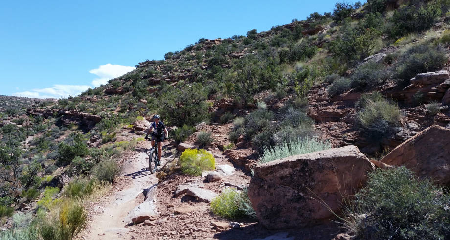 Lisa Webb Moab Downhill