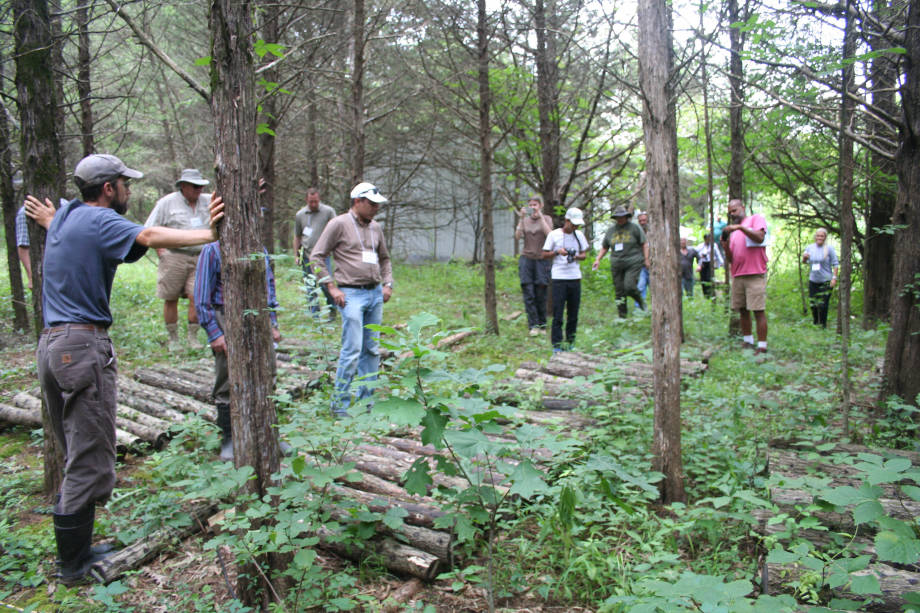 Participants of the Agroforestry Academy traveled to numerous farms during their weeklong stay. Photo courtesy of the University of Missouri's Center for Agroforestry.