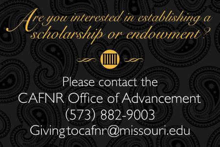Office of Advancement scholarship graphic