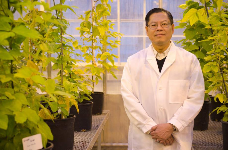 Dr. Henry Nguyen