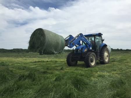 The Forage Systems Research Center in Linneus recently completed their hay harvest. That hay may become very important as hot and dry June weather could leave less pasture for cattle to graze on, forcing FSRC to use the hay earlier than normal. Photo courtesy David Davis.