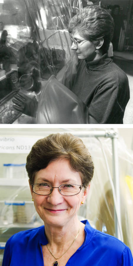 Judy Wall, then (????) and now. Top photo courtesy of the biochemistry department. Bottom photo by Nate Compton.