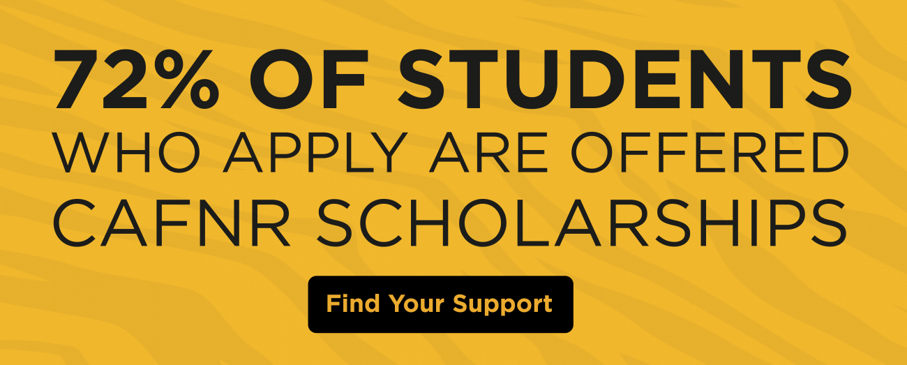 72 percent of students who apply are offered CAFNR scholarships