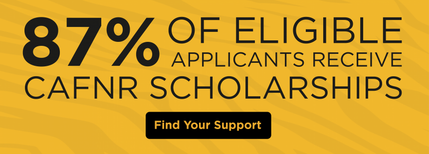 Graphic says, 87% of eligible applicants receive CAFNR scholarships