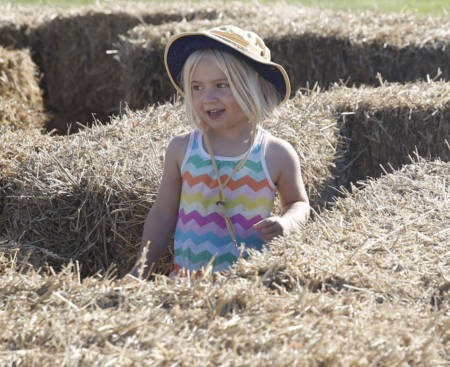 The South Farm Showcase is a fun, family-friendly event that will celebrate its 10th anniversary this year. The event offers several activities for individuals of all ages. Photo by Logan Jackson.