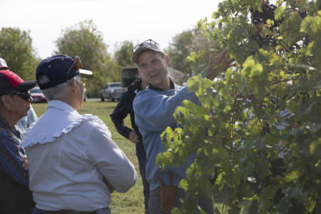 Dean Volenberg, Director of the University of Missouri Grape and Wine Institute, talks to attendees of the Southwest Research Field Day.
