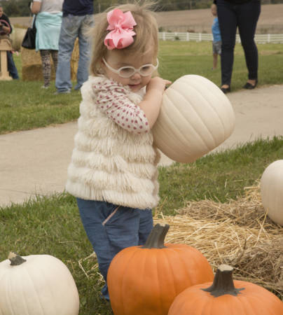 There were plenty of activities at Jefferson Farm and Garden during the 10th South Farm Showcase.