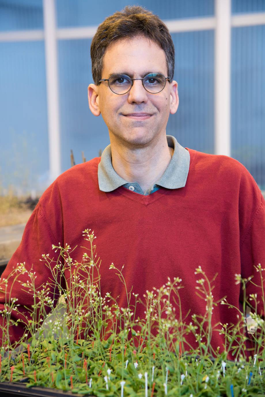 Walter Gassmann
