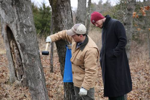 Ben Knapp (left) shows the group how to properly hammer in the plastic spile to collect the sap while graduate student Badger Johnson looks on.