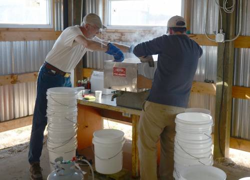 Knapp and Hank Stelzer, associate teaching professor and state forestry extension specialist, prepare to move the maple syrup from the smaller evaporator to bottles.