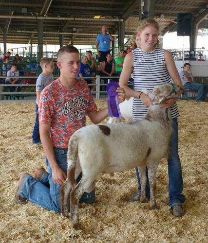 All three Francis children have grown up showing livestock through 4-H. Pictured here is Aly showing sheep with Britton. Photo courtesy of the Francis family.