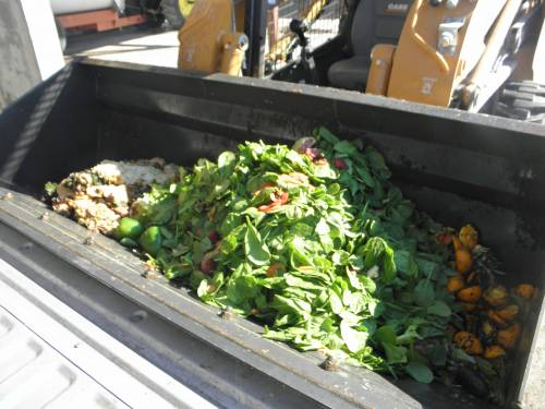 That relationship led to further discussions – mainly focused on food waste. More than 250 tons of food waste was finding its way to the landfill each year from the University of Missouri, including food scraps, paper napkins and leftover food.