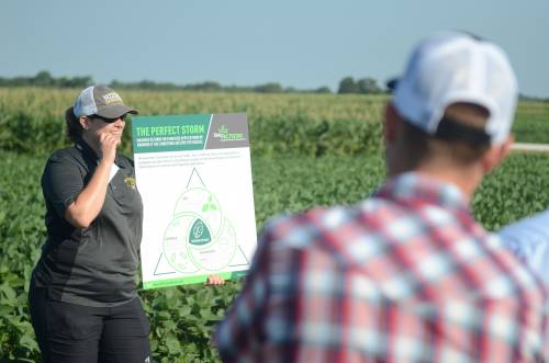 The focus of Bissonnette's presentations during this field day season is on disease issues that may show up throughout the year. While Missouri has experienced drought-like conditions throughout the summer, Bissonnette said there are some common diseases that can still be present.