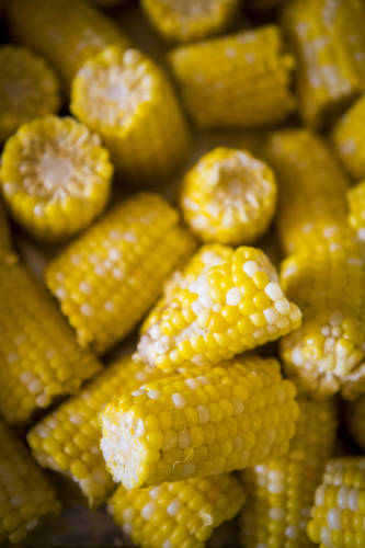 Guests of the upcoming South Farm Showcase will have an opportunity to taste a variety of sweet corn at the event. This is the 12th year of the South Farm Showcase, which will run from 10 a.m. to 4 p.m. on Saturday, Sept. 29.