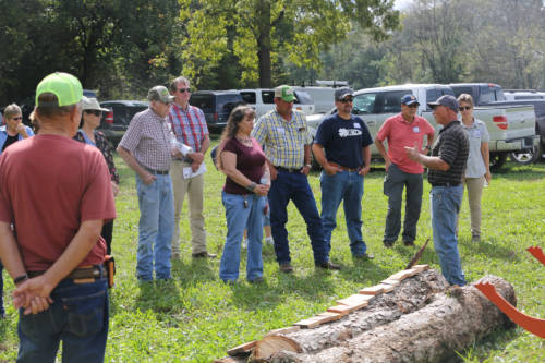 Red Rooster Sawmill Operation and Custom Cutting was on-site for a live demonstration during the Wurdack Research Center field day.