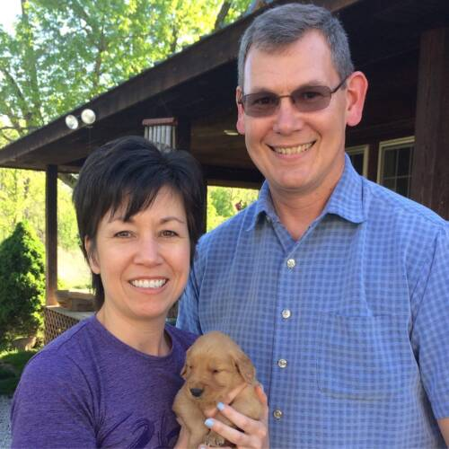 Mike and Debbie Sykuta brought Ella home on June 4, 2017. A few weeks later, Ella had her own Instagram account -- @ella.m.thegoldengirl. Ella has nearly 23,000 followers on the social media site. Photo courtesy of Mike Sykuta.