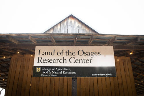 The more than 500 acres that make up the Land of the Osages Research Center were an estate gift from Doug Allen, who established MU's H.E. Garrett Endowed Chair Professorship in 2006 and passed away in 2017.