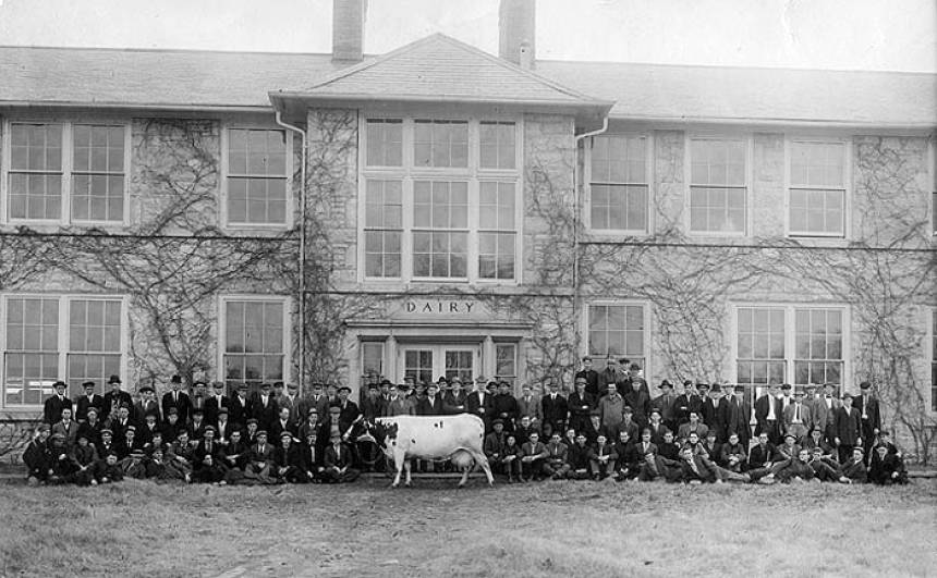 Students and cow