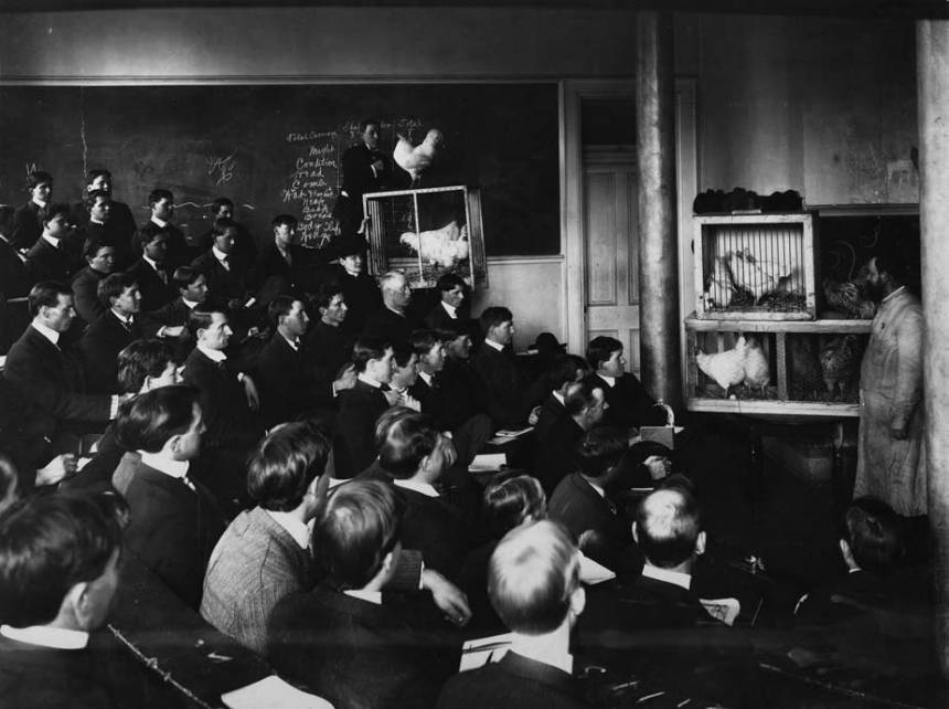 Classroom at Mizzou with chickens around 1900