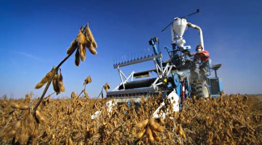 Moving the Agricultural Food ChainForward (click to read)