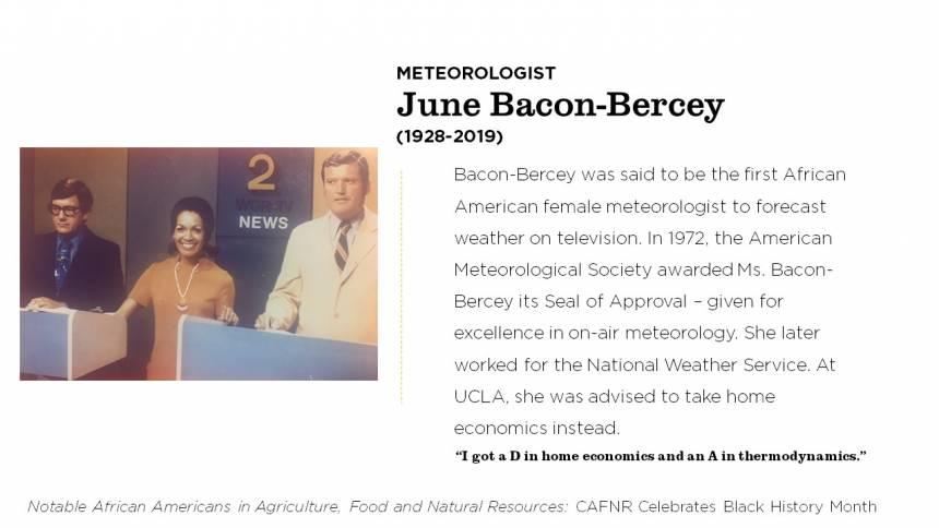 June Bacon-Bercey