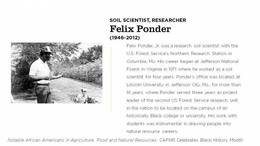 Felix Ponder