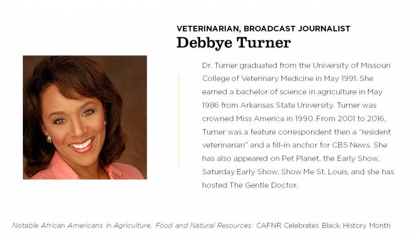 Debbye Turner
