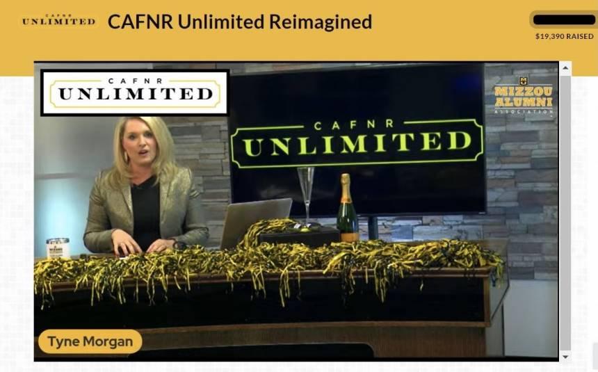 Tyne-Unlimited