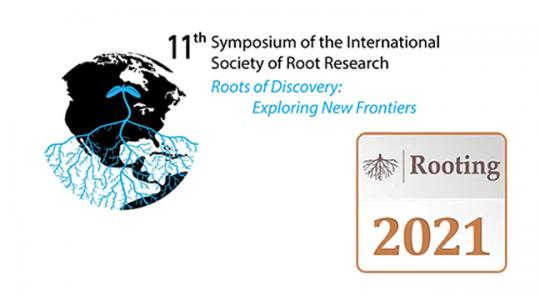 Root Biology NeverSleeps (click to read)