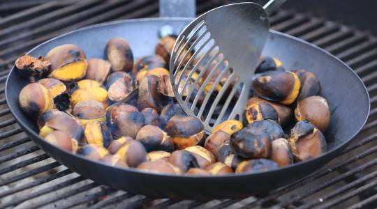 Celebrating Fall Harvest Season with RoastedChestnuts (click to read)
